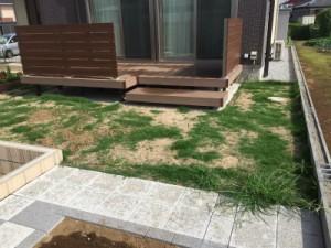 埼玉県東松山市も対応。芝生の管理、芝生のお手入れ、TM9専門店の株式会社ドリームガーデン