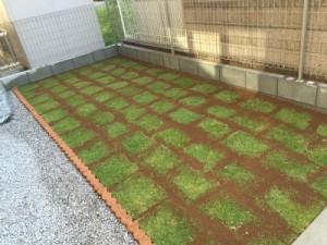 埼玉県さいたま市も対応。芝生の管理、芝生のお手入れ、TM9専門店の株式会社ドリームガーデン 施工後
