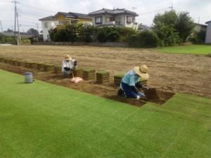 埼玉県富士見市、ふじみ野市、志木市も対応のTM9専門店 芝生の管理、芝生のお手入れもお任せの株式会社ドリームガーデン